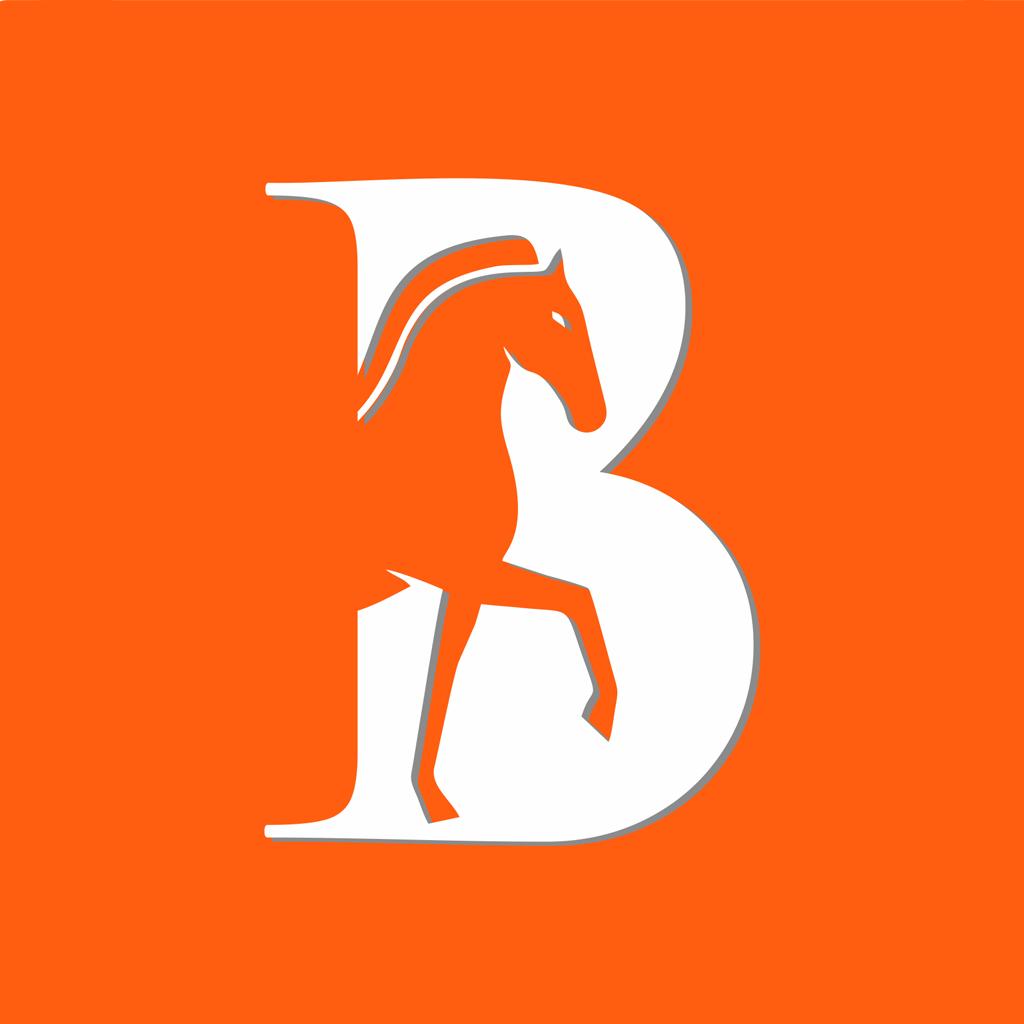 马帮智运安卓版 V1.0.0
